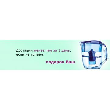Акция «Доставим менее чем за 1 день, если не успеем подарок Ваш» *